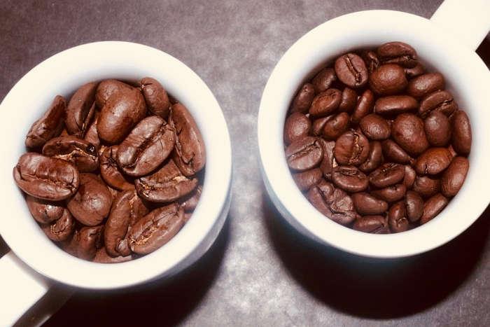 Auch im gerösteten Zustand sind die Maragogype Kaffeebohnen größer als andere Sorten