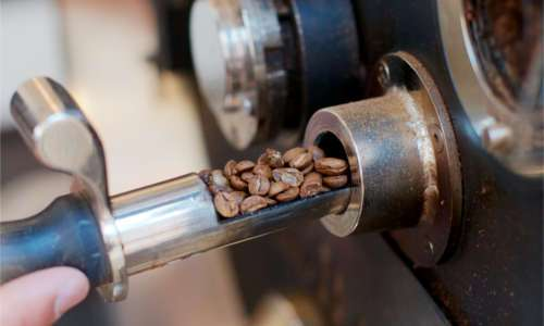Kontrolle der Kaffeebohnen zur Untersuchung des Röstgrades